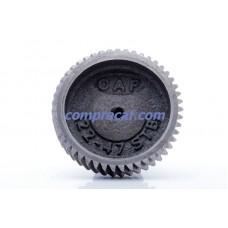 Engrenagem de ferro 47 dentes para picador CAF/22 STB